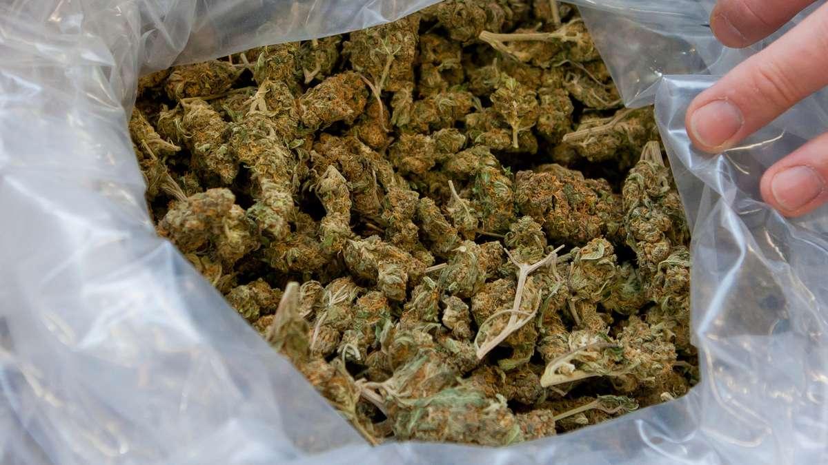 1839784902-marihuana-dpa_20140320-111147-1o8c8zacqfef.jpg
