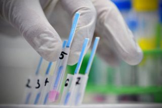 laboratorija-virus-krv-grip-foto-rojters-1422091870-610575.jpg