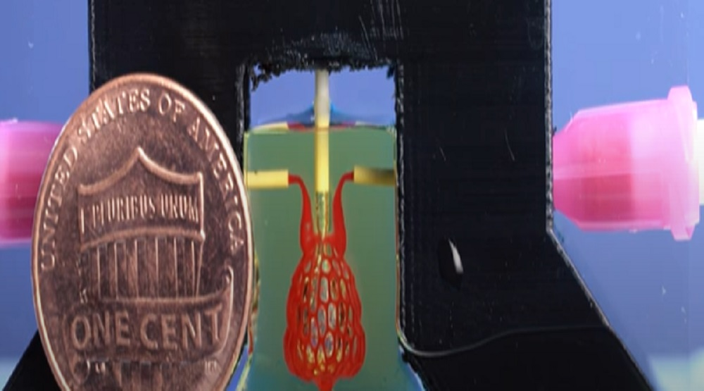 VIDEO: Da li je štampanje 3D organa bliže nego što mislimo?